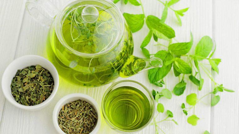 خصائص التغذية الواسعة للشاي الأخضر