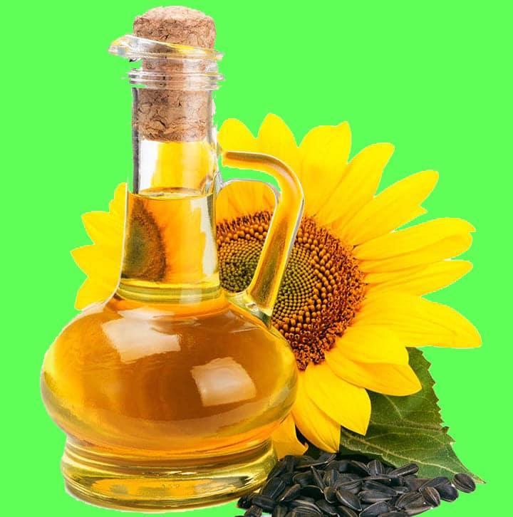 فوائد شرب زيت عباد الشمس
