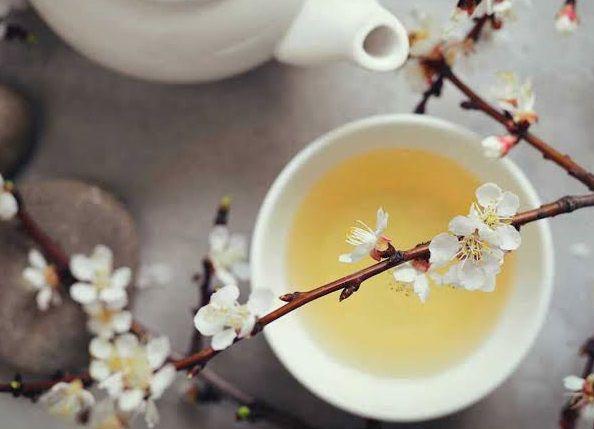 افضل شاي التخسيس لفقدان الوزن