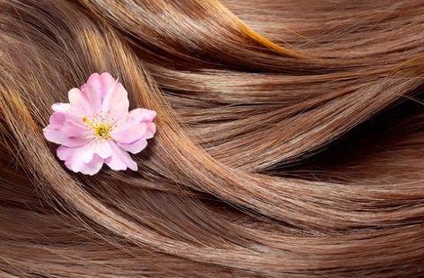 تجارب فوائد الصبار لتطويل الشعر