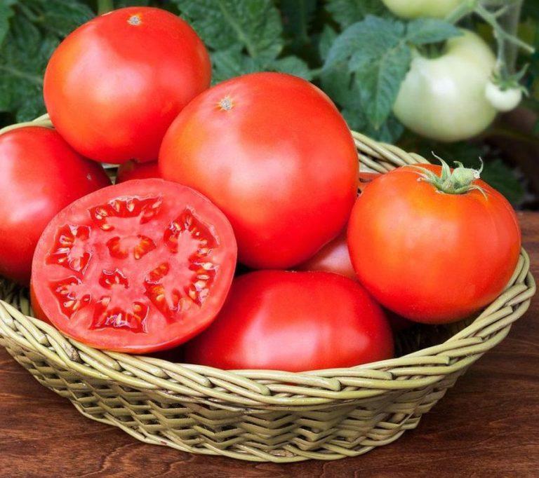 أهم 27 فائدة من فوائد الطماطم للجسم والبشرة والشعر